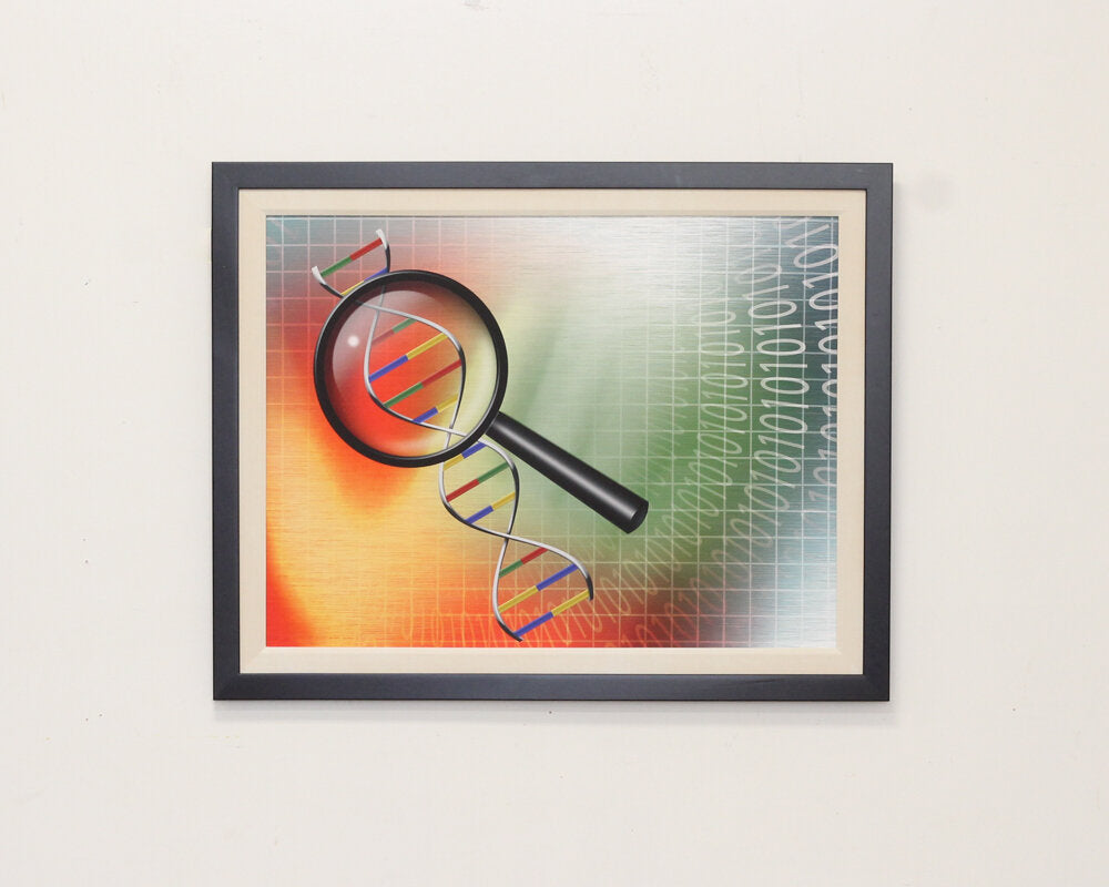 Magnifying DNA Print