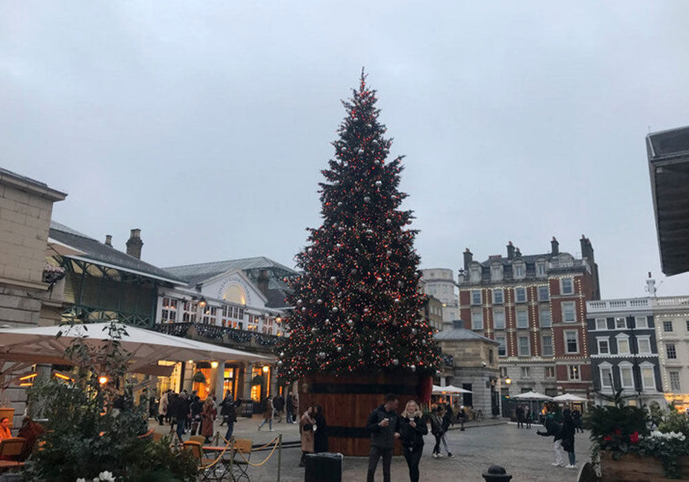 Image of large Christmas tree in Covent Garden, London.