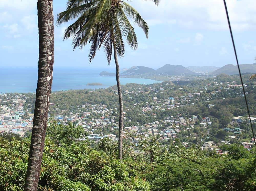Image of view of Castries, St Lucia from above with palm trees in the foreground and mountains in the background.