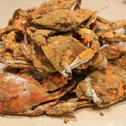 Extra Large Male Steamed Crabs