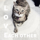 Cumin the cat says Love Each Other