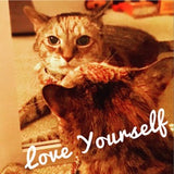 Cumin the cat says love yourself