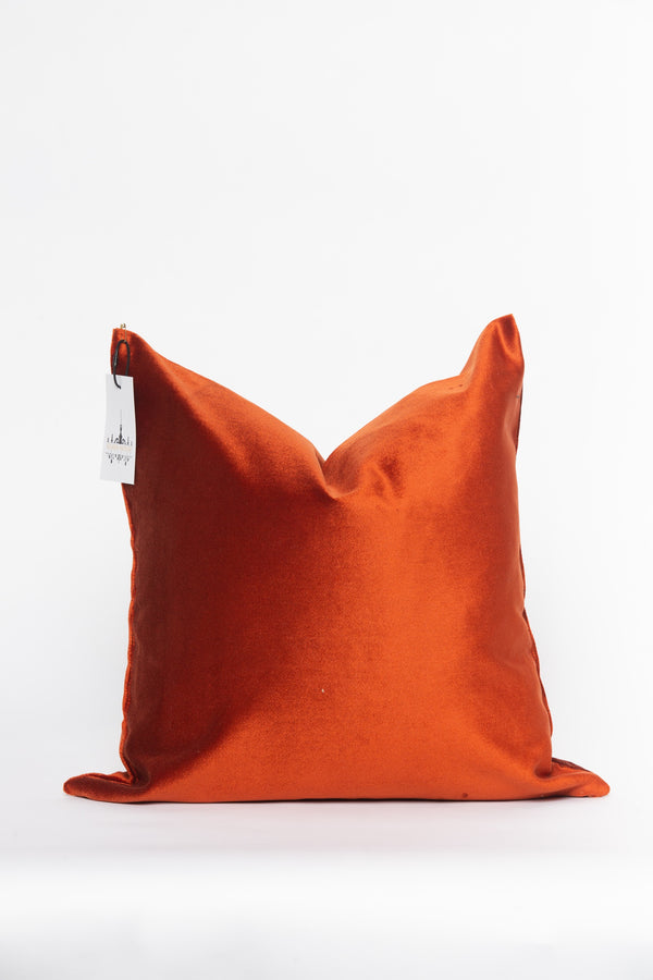 Pretty Penny Pillow Cover