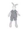 Tiny Barnabe the Donkey