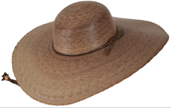 Elegant Ranch Hat