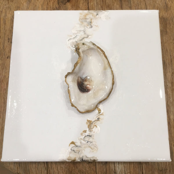 Oyster Shell on Canvas