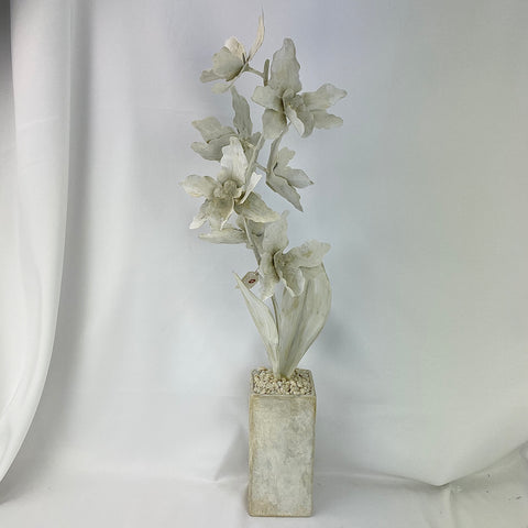 Tommy Mitchell All Antique White Orchids
