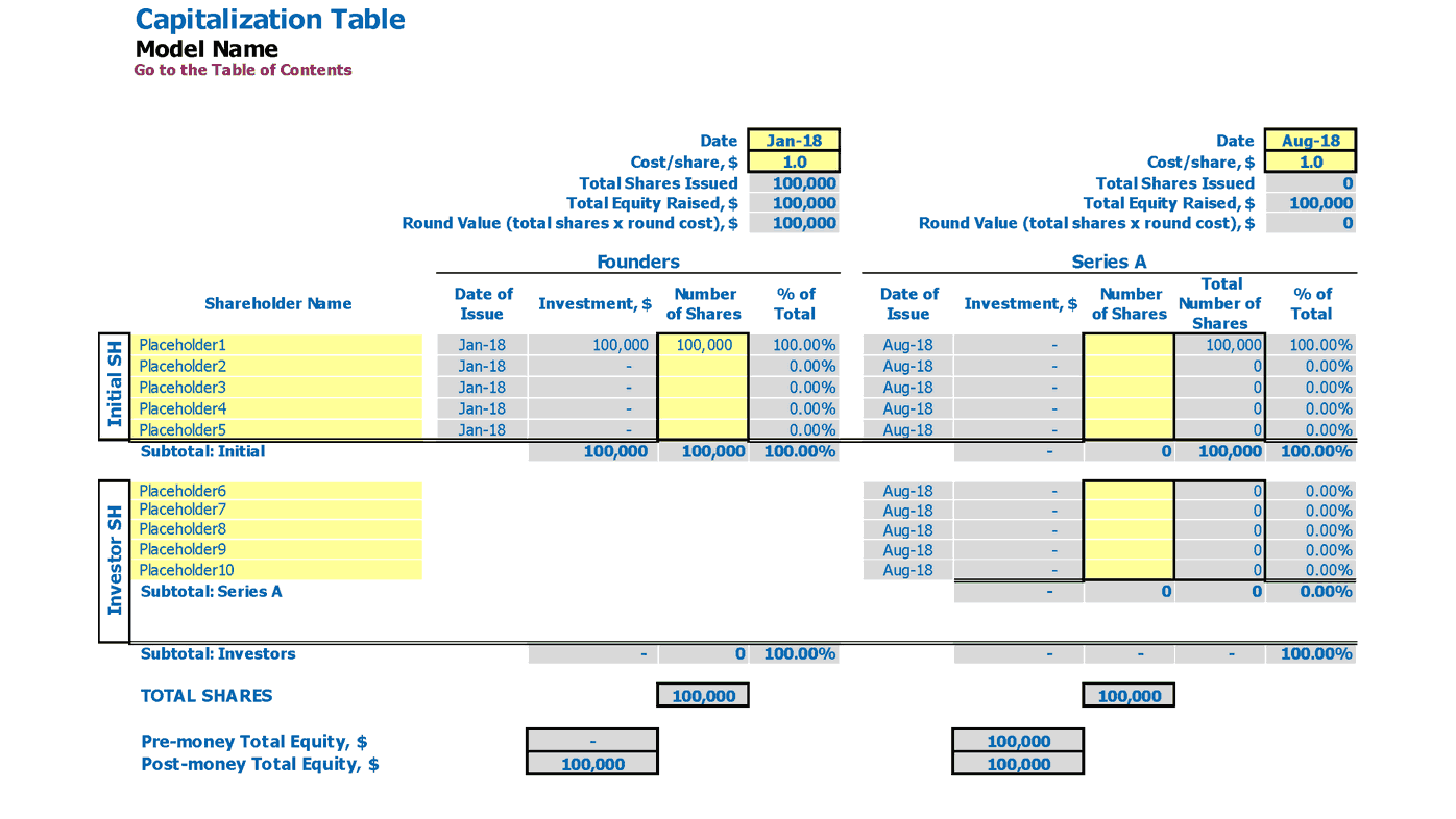 Saas Financial Model Capitalization Table Inputs