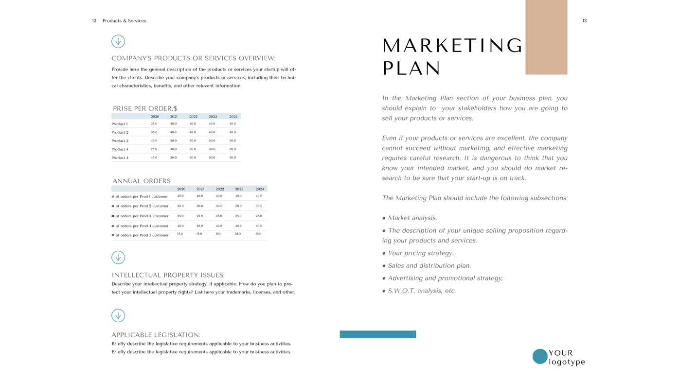 General Marketplace Business Plan Format Marketing Plan A