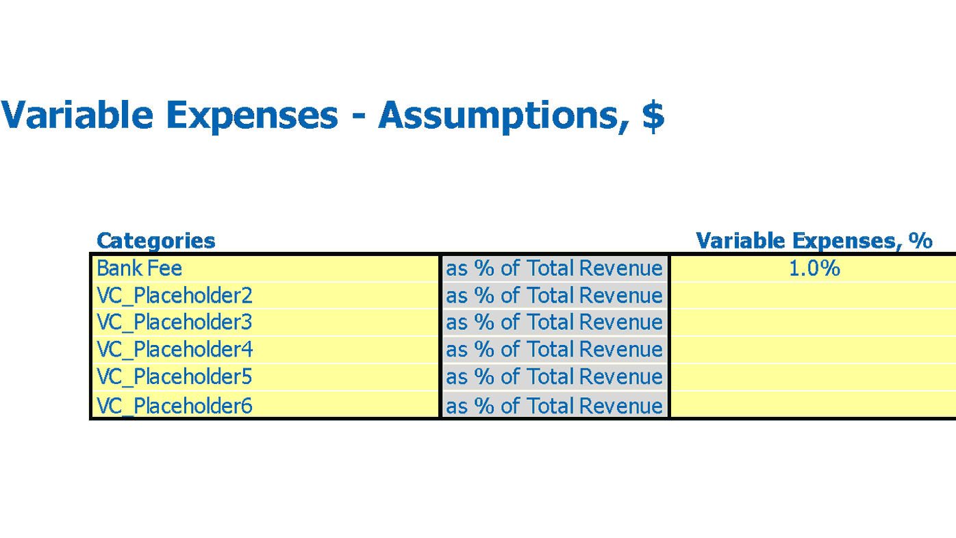 Cunsumer To Consumer E Commerce Pro Forma Variable Expenses Inputs