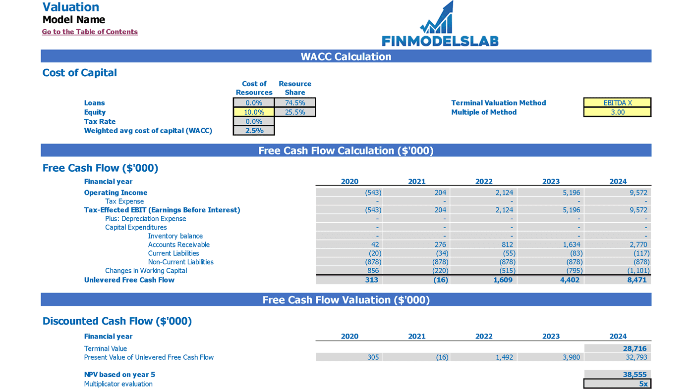 Freelance Platform Financial Model Excel Template Valuation