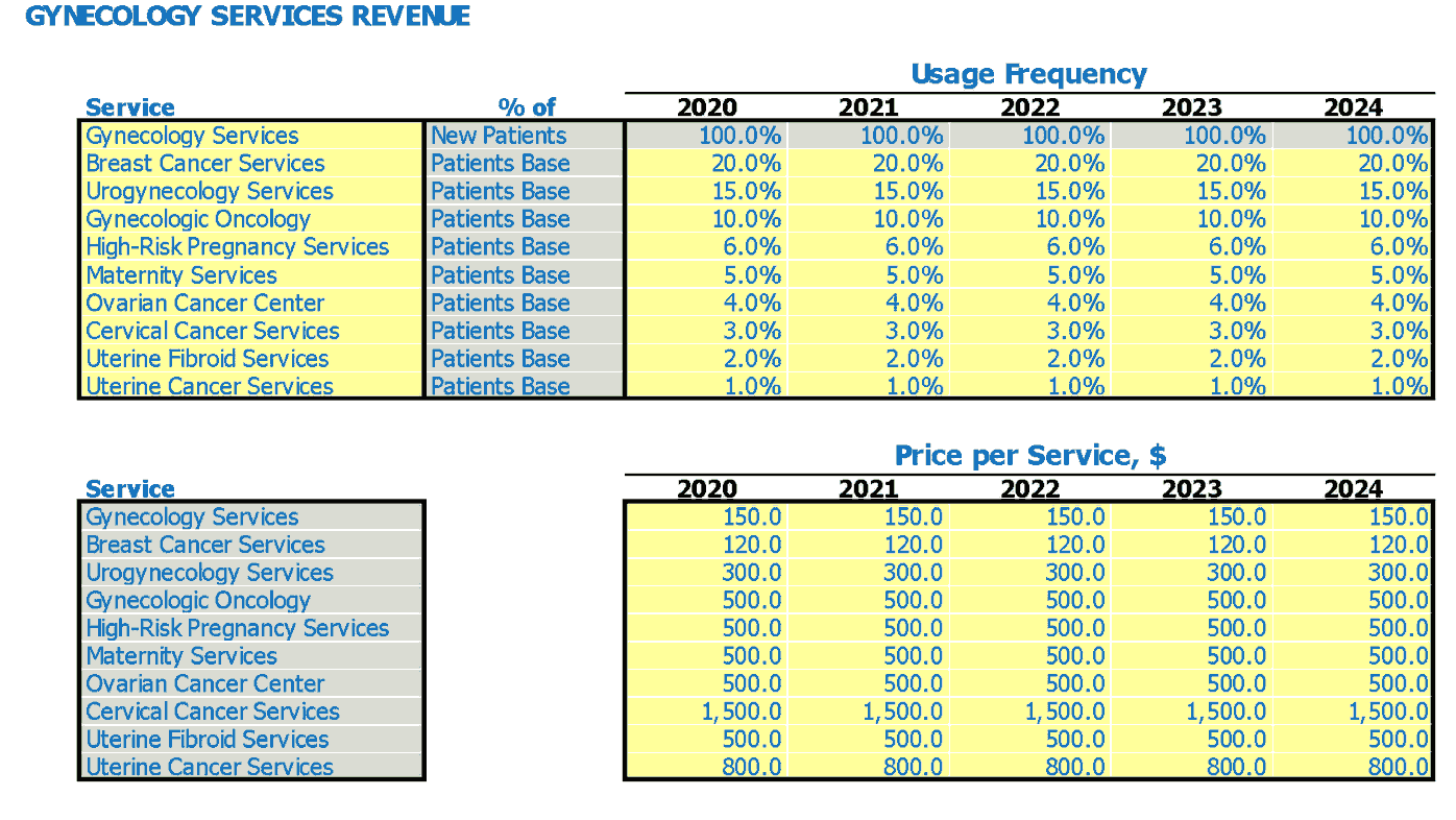 Gynecology Financial Pro Forma Service Usage Frequency And Price Per Service Inputs