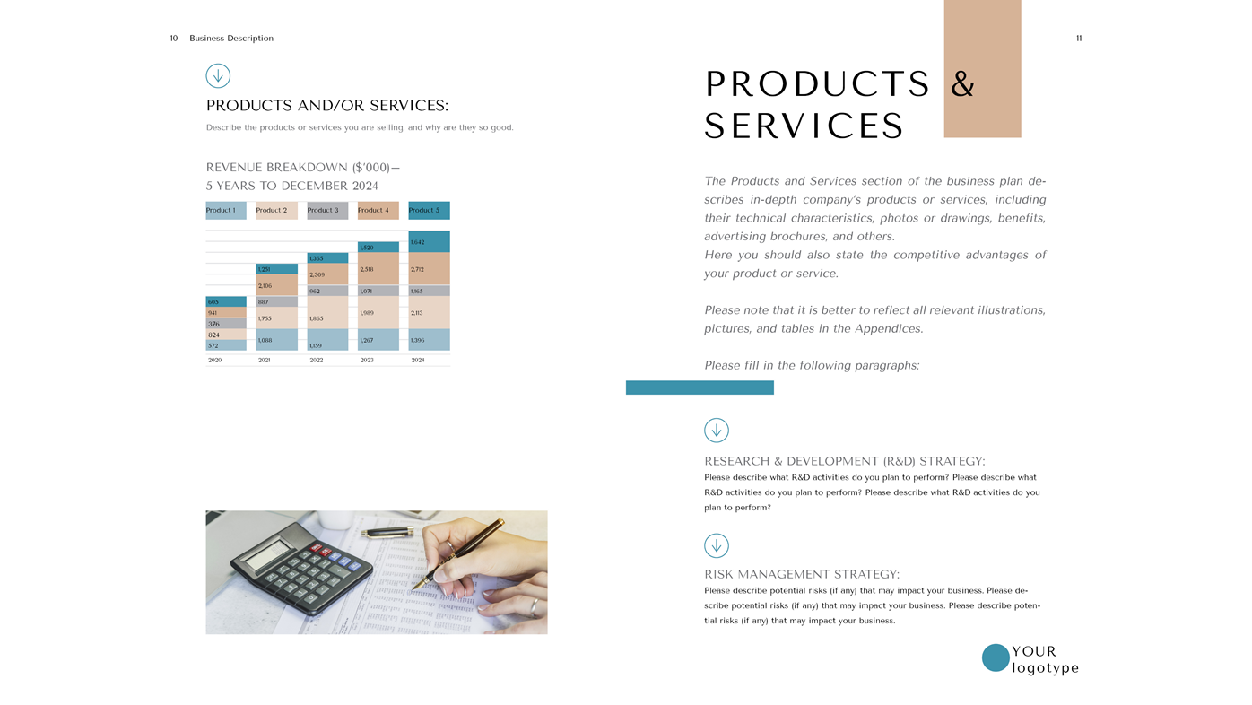 Tailor Business Plan Template Doc Products And Services