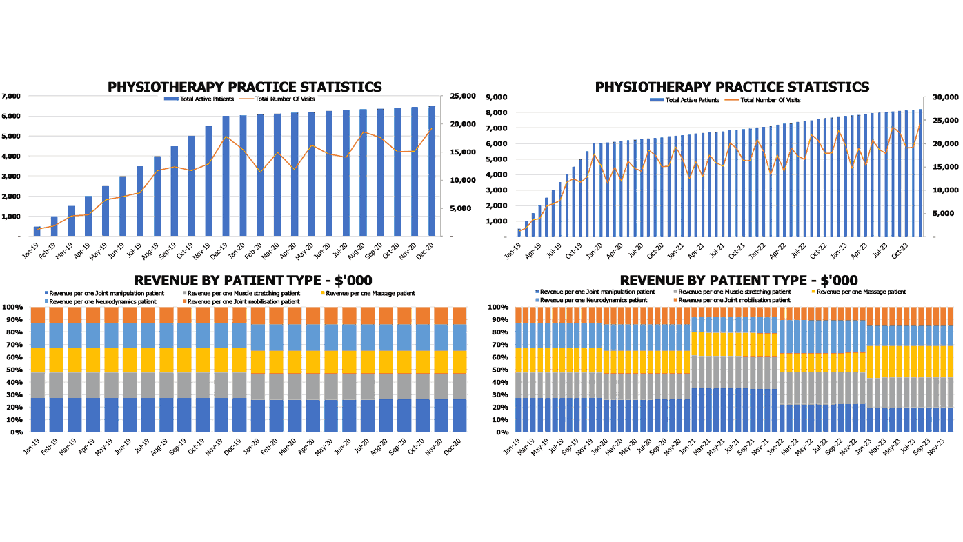 Physiotherapy Clinic Business Plan Statistics And Revenue By Patient Charts