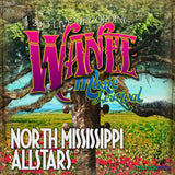 North Mississippi Allstars - Live at 2013 Wanee Music Festival