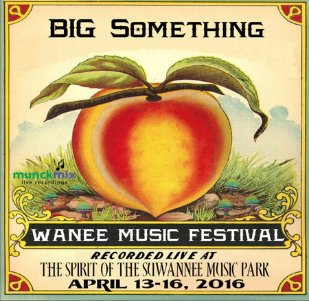 Gov't Mule - Live at 2016 Wanee Music Festival