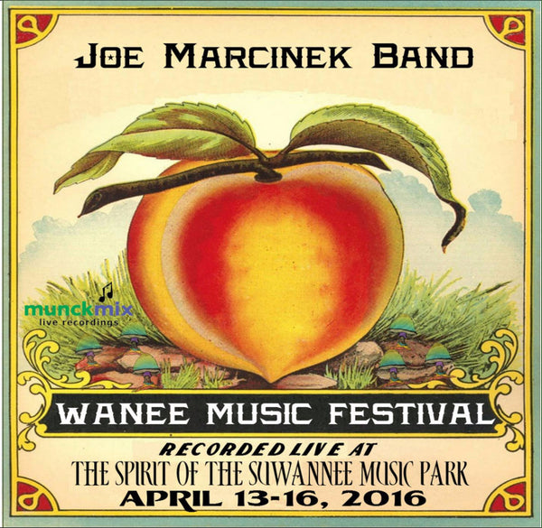 Joe Marcinek Band - Live at 2016 Wanee Music Festival