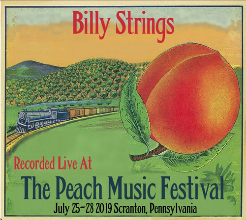 Billy Strings - Live at The 2019 Peach Music Festival
