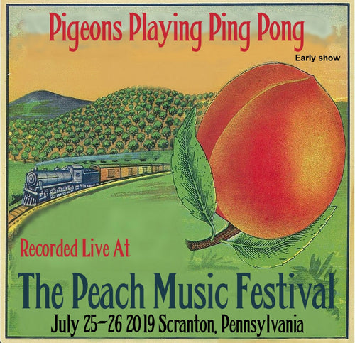 Pigeons Playing Ping Pong (Early Show) - Live at The 2019 Peach Music Festival