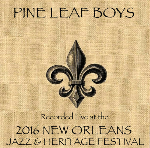 Pine Leaf Boys - Live at 2016 New Orleans Jazz & Heritage Festival