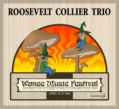 Roosevelt Collier Trio   - Live at 2018 Wanee Music Festival