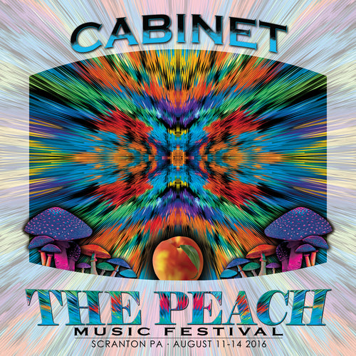 Cabinet - Live at 2016 Peach Music Festival