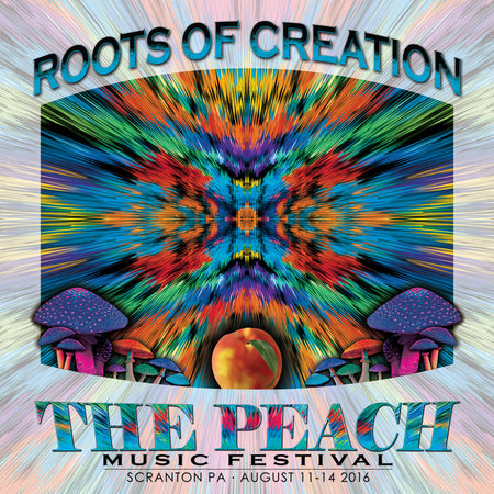 Floodwood - Live at 2016 Peach Music Festival
