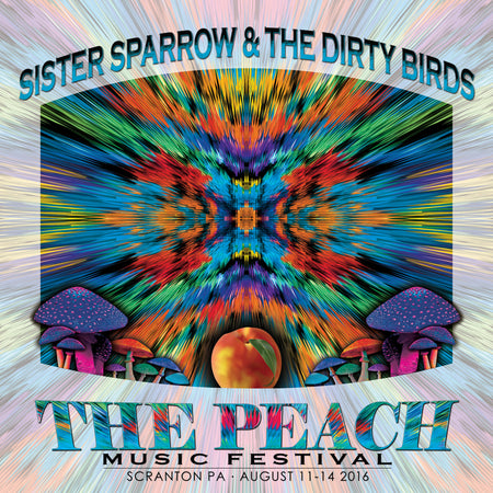 The Peach Music Festival - 2017 CD Set