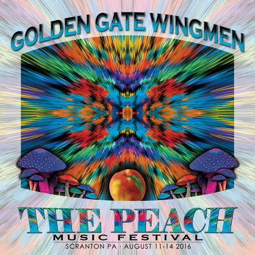 Golden Gate Wingmen - Live at 2016 Peach Music Festival