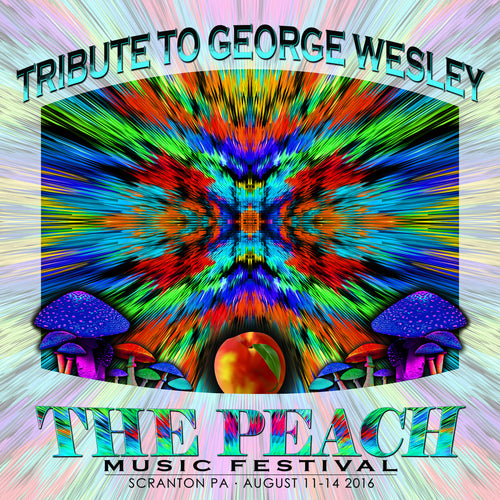 Tribute to George Wesley - Live at 2016 Peach Music Festival