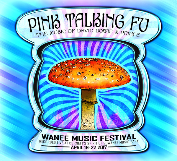 Pink Talking Fu - Live at 2017 Wanee Music Festival