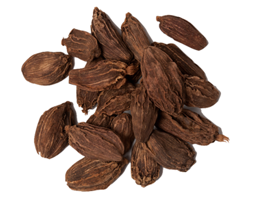 BLACK CARDAMOM - Spice of Zara