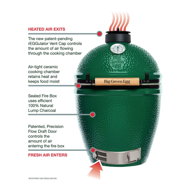 Big Green Egg Large Charcoal Grill, 262 sq-in Primary Cooking Surface, Green - 117632