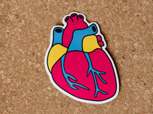 Load image into Gallery viewer, Sticker shaped like a human heart in pansexual pride colours