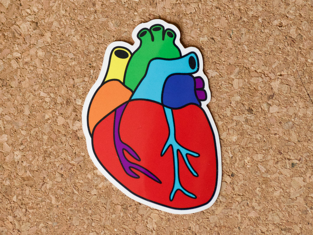 Sticker shaped like a human heart in rainbow colours