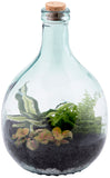 Bottle Garden Terrarium (S-M sizes available)