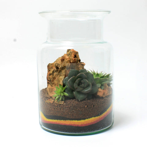 Sunset Terrarium