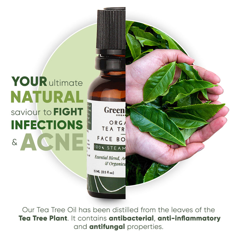 Greenberry Organics Organic Tea Tree Oil  - 15 ML for Acne Control, Dandruff Control & Daily Use - 15ML X 4 Pack Of 4