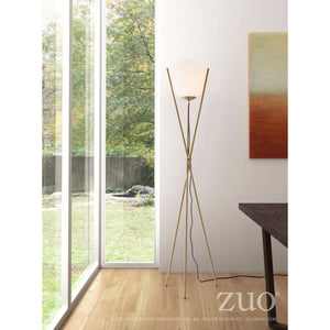 Stunning Floor Lamp of Brushed Brass