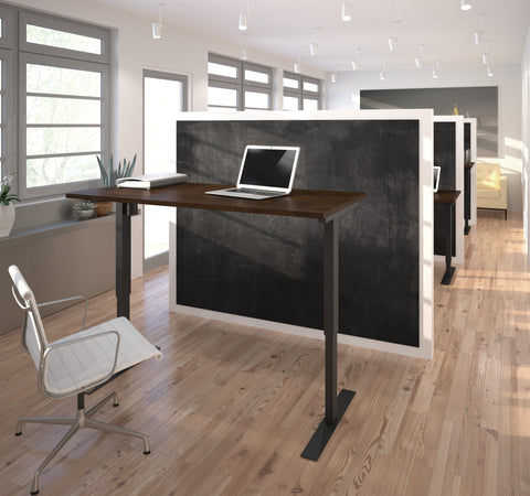 "60"" Sit-Stand Electric Height Adjustable Office Desk in Chocolate (28"" - 45"" H)"