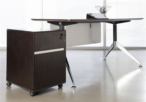 "55"" Contemporary Desk and Matching Mobile File in Espresso from Ergo Office"