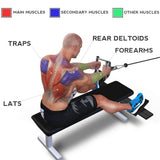 High Pull-down Handle Sitting Position Rowing