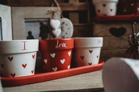 Pot Luck Plant Pot Valentine's Triple Set (3 pots) and saucer