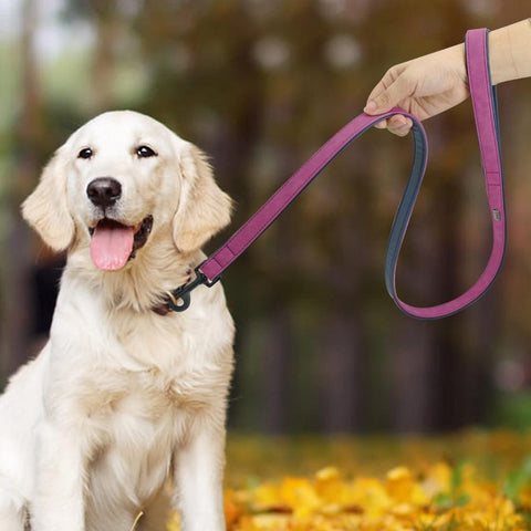 Leather Dog Leash - Dog's Love Store