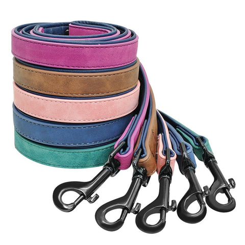 Personalized Dog Collar And Leash Set