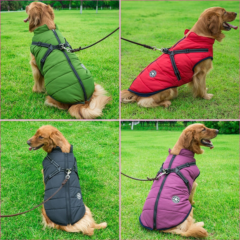 Dog Coat With A Built-In Harness