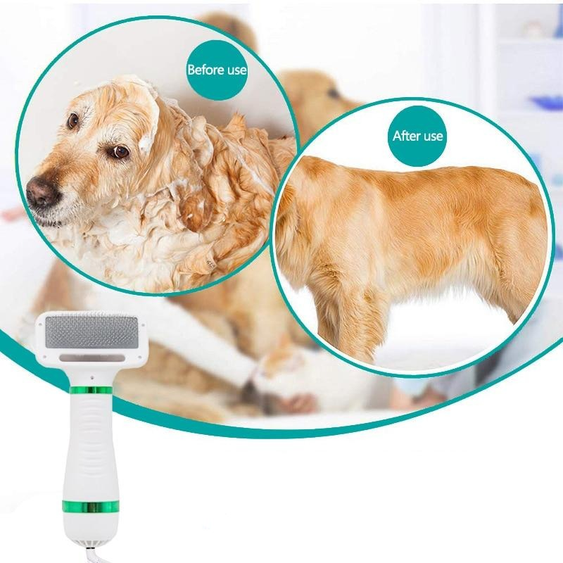 hairdryer for dogs