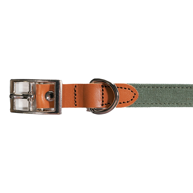 Leather Dog Collar & Lead Set - Green