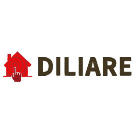 diliart