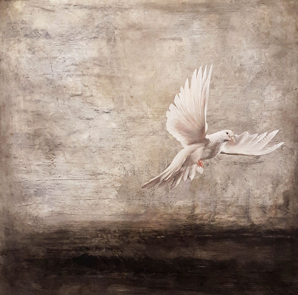 Ashen Dove | SOLD